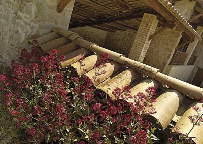 Casa de turisme rural la rovira al berguedà sagàs